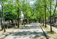 Tree-lined avenue of Père-Lachaise