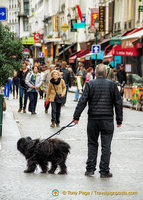 Parisians and their love of dogs