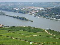 [Rudesheim - Rhine River Cruise - Germany]