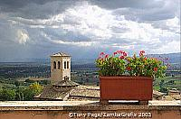 Geraniums flourish in this town, adding colour to its panoramic views of the Umbrian countryside