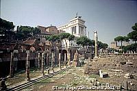 The Forum, Rome [Rome - Italy]