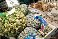 Bags of vongole and garusoli murici (sea snails)