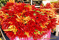 Colourful bunches of chilli