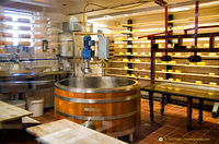 The cheesemaking factory