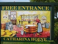A visit to Catharina Hoeve, a cheese farm at Zaanse Schans