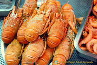 Freshly boiled lobsters