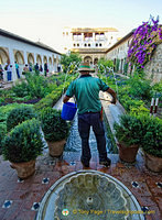 Palace of the Generalife: Gardener at work in the Patio de la Acequia
