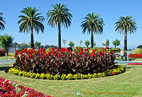 Beautiful flower beds of the Piquío Gardens