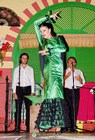 One of the star flamenco dancers