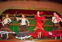 Tablao El Palacio Andaluz flamenco troop