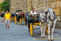 Plaza Virgen de los Reyes is where you'll find many of these horse-drawn carriages.