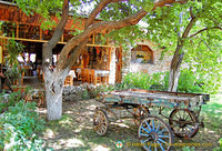 Garden of the Anatolian Restaurant