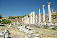 Via Tecta was the colonnaded and paved sacred way
