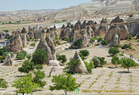 Impressive group of fairy chimneys