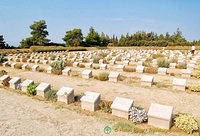 Graves at Lone Pine Cemetery, Gallipoli