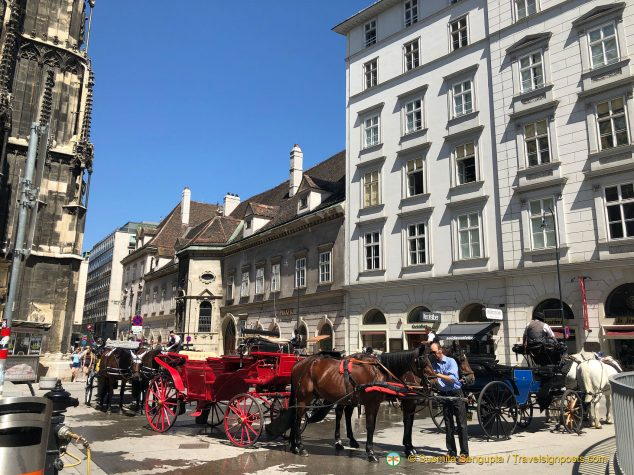 Horse carriages are seen everywhere in Vienna.