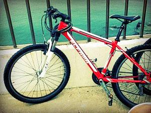 My Trusty Bike