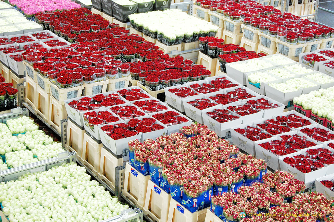 Букеты, доставка цветы в регионы россии оптом