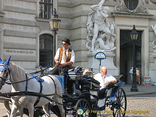 A horse and carriage sightseeing tour of Vienna