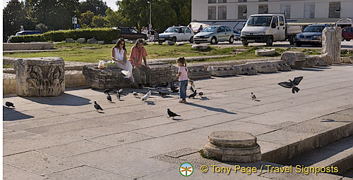 Zadar - Croatia - Pidgeon feeding