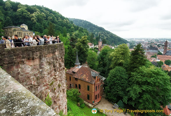 Heidelberg Castle - from the viewing terrace