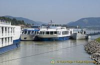 'MS Poetry' moored in the Wachau Valley