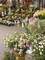 Flower shop Flower Square (Preradovicev Trg)