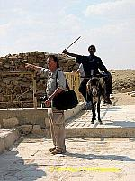 Tony's spotted something, oblivious to the charging donkey.