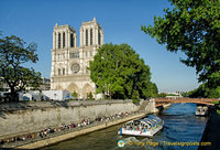 Notre-Dame and Seine River view