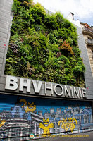 BHV Homme, a Marais department store dedicated to men's fashion. I like the vertical garden.