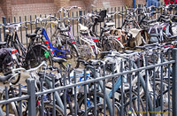 As in other parts of the Netherlands, there are plenty of bicycles in Delft