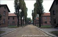 Auschwitz camp blocks and buildings