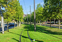 Bilbao Metro railway track - with grass...