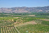 Agricultural land in Ephesus